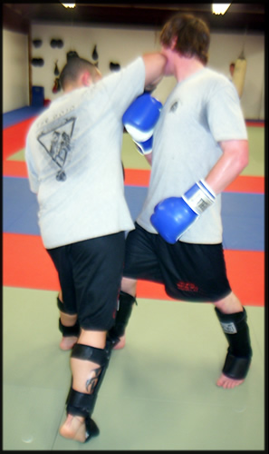 Shiv Naresh Teens Boxing Gloves 12oz: Kickboxing --The DOJO Martial Arts Training Center Wolcott, CT
